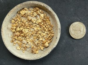 The gold nuggets pictured here were found with the use of a metal detector.